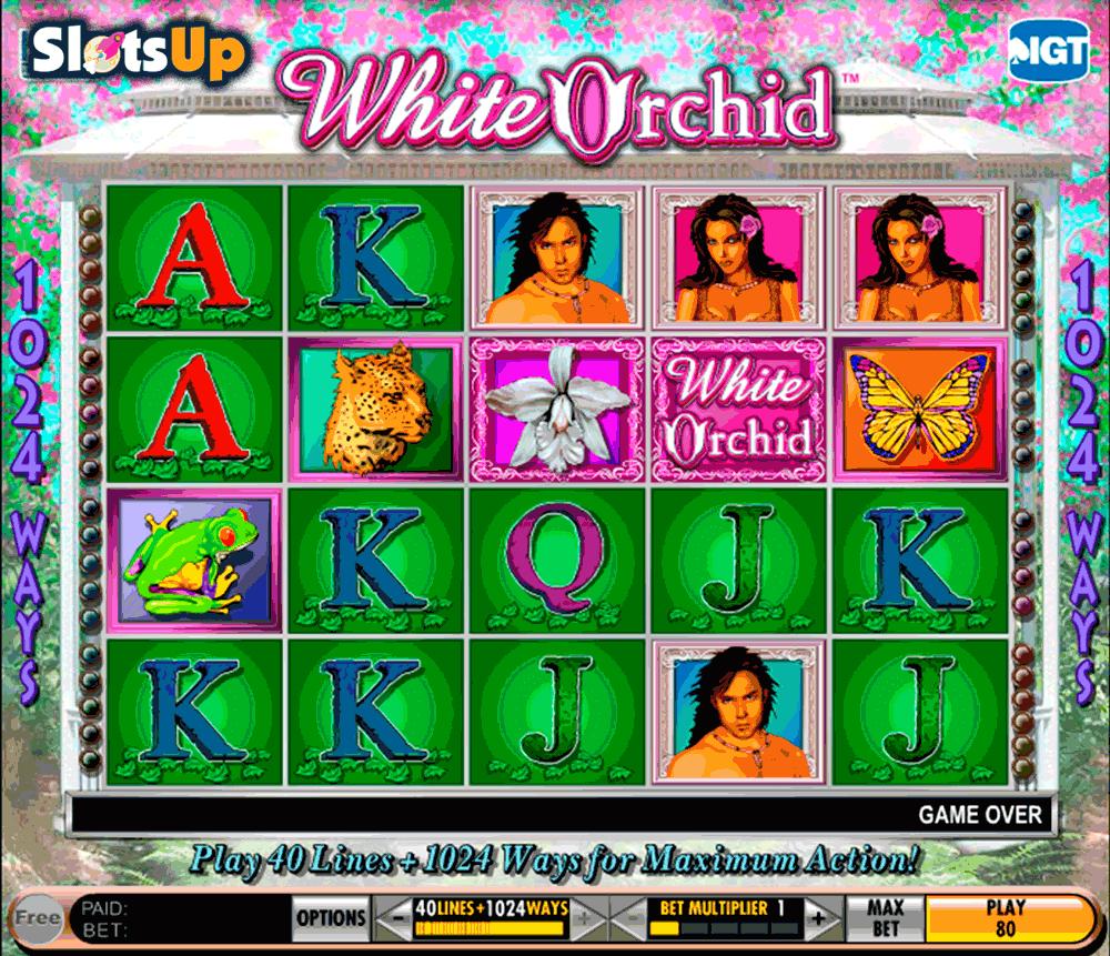Casinos IGT 687509